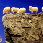 worry-flock-like-sheep