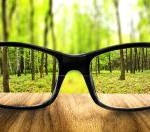 clear-forest-in-glasses